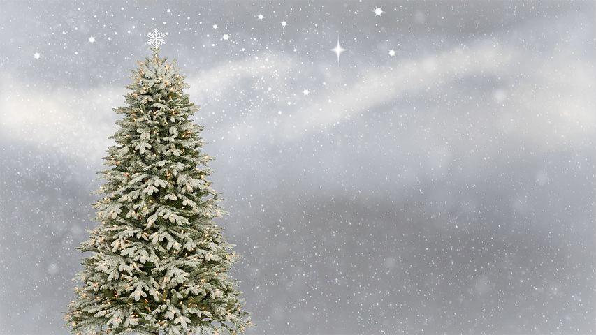 christmas-3006743__480